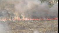 Brush Fire Near Miami