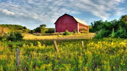 A new state Revenue Department preliminary report says agricultural land property values have dropped in Nebraska for the first time since at least the early 1990s