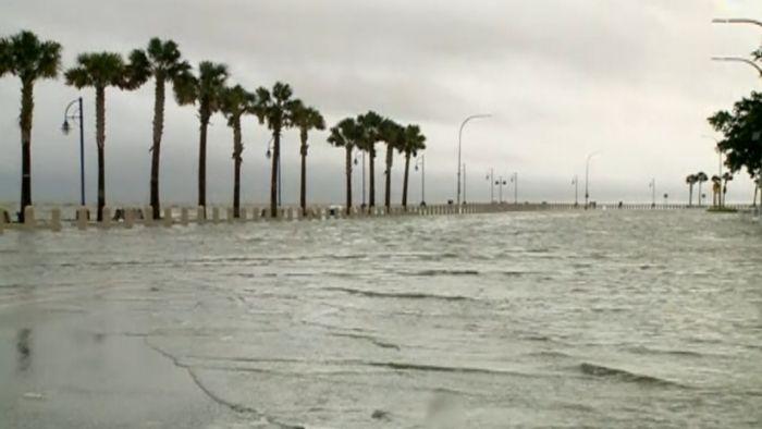 TS Cindy bringing heavy rains, storms to Gulf Coast