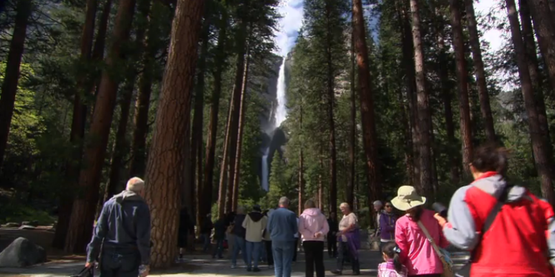 All fourth graders and their families are granted free admission to national parks and other federal lands for a full year with a fourth grade pass.
