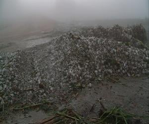 Hail piled on a gravel road in Dixon County