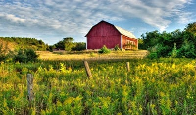 A farm management company says average prices for high-quality farmland have dropped over the past year in Nebraska but slightly risen in Iowa