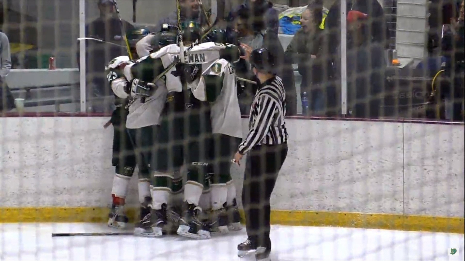 The Metros beat Mason City on Sunday, 4-2, claiming the MHSHL championship.