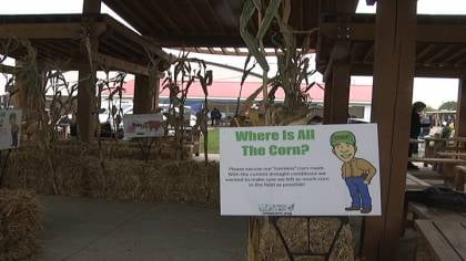 It was Iowa Corn Day at the Clay County Fair.