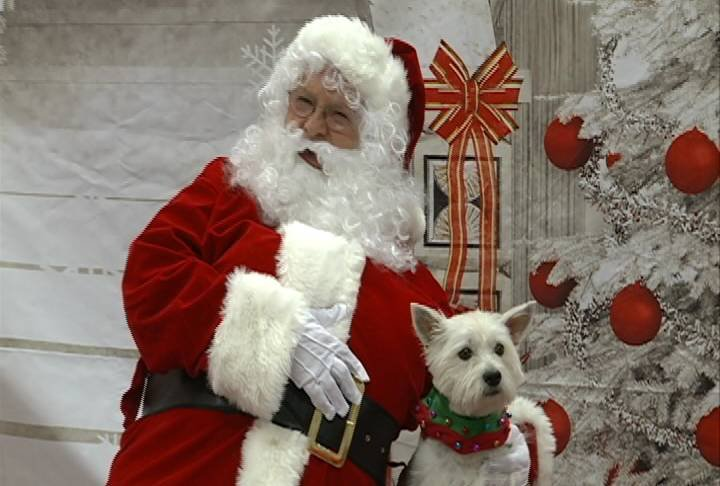 "Santa welcomed a different breed of ""kids"" for the Paws N Claus photo shoot."