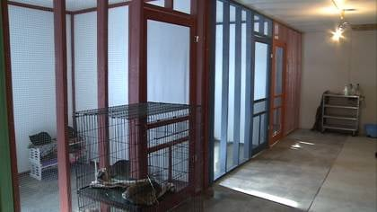 The shelter is still under construction, but they plan on adding more &quot;colonies&quot; seen here to house cats up for adoption.