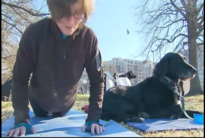 "The ""Thank-Dog Boot Camp"" program is popping up in major cities across the country."