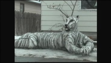 Ben Woods knew his girlfriend loved tigers so he sculpted one for her in the front yard.