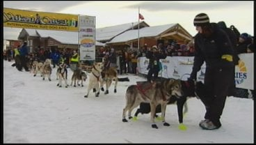 Teams will travel one-thousand miles from Whitehorse to Fairbanks, Alaska.