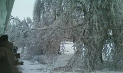 Photos from Larchwood, Iowa show ice is now dropping temps and tree limbs.