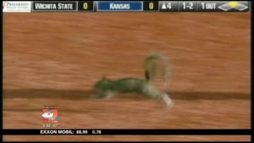 Wichita State's Tyler Baker used his batting helmet to bring the rampaging squirrel into custody.