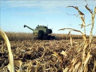 The weekly crop report says 5% of Iowa's corn and soybean crops have been harvested