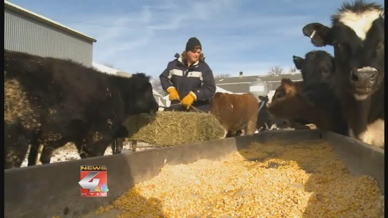 Siouxland woman taking leading role in agriculture