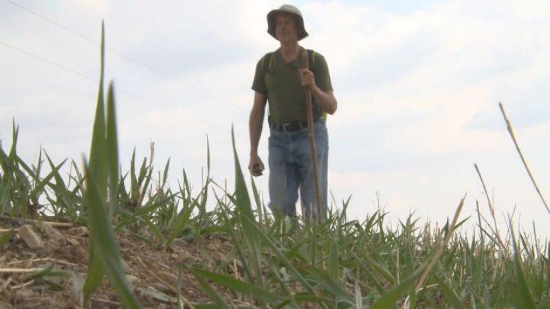 Ed Fallon walks along Kiwi Avenue near Orange City, Iowa.